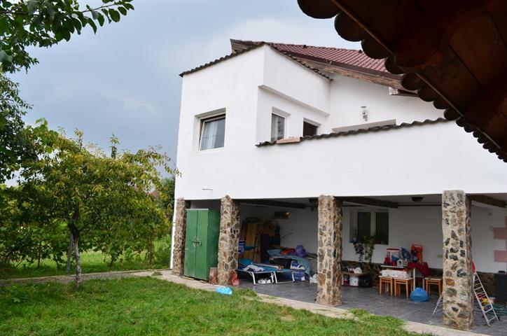 Casa singur in curte Terezian